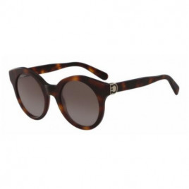 Salvatore Ferragamo Sunglasses SF862S 214
